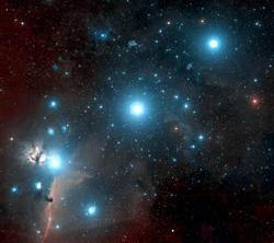 stelle1