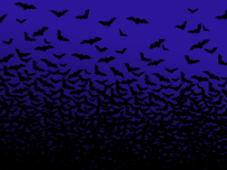 halloween_pippistrelli