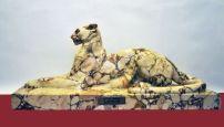 Leopardo. 1931, corallina africana. Roma, Camera dei Deputati