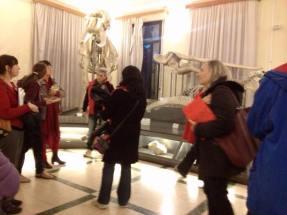La biodiversità al museo per interpretare e tutelare le diversità della città, Museo Civico di Zoologia